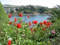 Vista sul mare con i fiori rossi Fotografia Stock Libera da Diritti