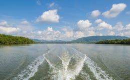 Vista sul mare con la foresta della mangrovia nel giorno soleggiato fotografie stock libere da diritti
