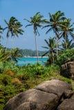 Vista sul mare con le palme e le pietre, verticali Fotografia Stock