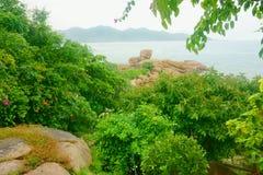 Vista sul mare con le rocce nella priorità alta Immagine Stock Libera da Diritti