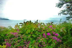 Vista sul mare con le rocce nella priorità alta Fotografie Stock