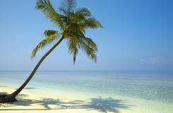 Vista sul mare delicata Immagine Stock