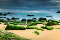 Vista sul mare della natura con le rocce coperte dai muschi verdi, dalle onde vaghe e dal cielo nuvoloso scuro fotografie stock