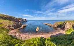 Vista sul mare della testa della st Abbs, Scozia Il Regno Unito immagine stock