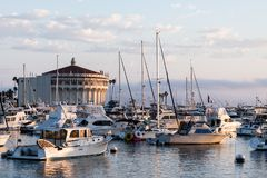Vista sul mare di alba nel porto di Avalon che guarda verso il casinò con le barche a vela, i pescherecci e gli yacht attraccati  Immagini Stock