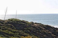Vista sul mare di inverno Fotografia Stock