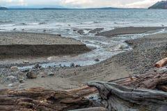 Vista sul mare di nord-ovest pacifica 2 Immagini Stock Libere da Diritti