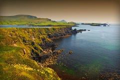 Vista sul mare litoranea scenica irlandese vibrante Immagini Stock