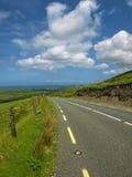 Vista sul mare litoranea scenica irlandese vibrante Fotografie Stock