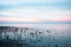 Vista sul mare - scena di tramonto Fotografie Stock