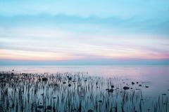 Vista sul mare - scena di tramonto Immagini Stock Libere da Diritti