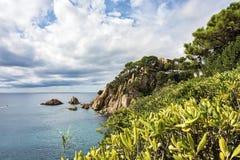 Vista sul mare Un'alta costa rocciosa con vegetazione verde Fotografia Stock