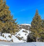 Vista sul Mt Rigi nell'inverno Immagine Stock