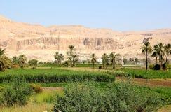 Vista sul tempiale di Hatshepsut. Immagini Stock Libere da Diritti