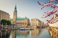 Vista sul townhall di Amburgo alla molla Immagine Stock