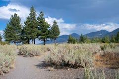 Vista sull'alta sierra montagne Immagini Stock Libere da Diritti
