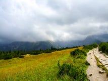 Vista sull'itinerario fra il riparo di Polana Jaworzynka e di Murowaniec in Tatra in Polonia Immagine Stock