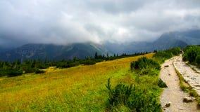 Vista sull'itinerario fra il riparo di Polana Jaworzynka e di Murowaniec in Tatra in Polonia Fotografie Stock Libere da Diritti