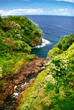Vista sull'oceano Fotografie Stock Libere da Diritti