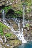 Vista sulla cascata con la giungla su Reunion Island fotografia stock