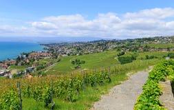 Vista sulla città di Lutry e della puleggia di Losanna Svizzera Fotografie Stock