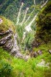 Vista sulla foresta da sopra Fotografia Stock