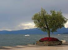 Vista sulla polizia del lago e sul Alpes Fotografia Stock