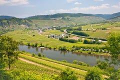 Vista sulla valle del Moselle dalla montagna Fotografia Stock Libera da Diritti