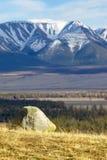 Vista sulla valle di Kurai in Altai Immagini Stock