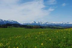 Vista sulle alpi austriache e tedesche dalla collina vicino alla st Fotografie Stock Libere da Diritti
