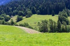 Vista sulle alpi, Svizzera Immagine Stock