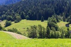 Vista sulle alpi, Svizzera Immagine Stock Libera da Diritti
