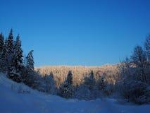 Vista sulle colline durante del il inverno ricco di neve Immagini Stock Libere da Diritti