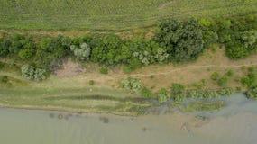 Vista superior aérea de los árboles y de los caminos, río, Rusia del verde del verano Foto de archivo libre de regalías