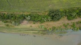 Vista superior aérea de los árboles y de los caminos, río, Rusia del verde del verano Fotografía de archivo
