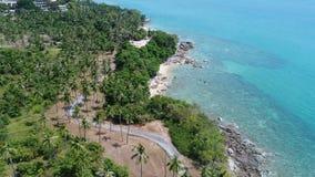 Vista superior aérea do litoral e da ilha do mar com palmeiras filme