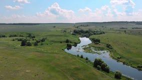 Vista superior aérea do rio no dia ensolarado Conceito para a ecologia, natureza, rios, ?gua vídeos de arquivo