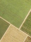 A vista superior coloca plantações fotografia de stock