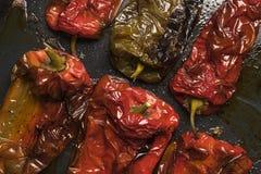 Vista superior da pimenta vermelha e verde roasted no forno imagem de stock royalty free