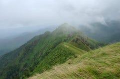 Vista superior de colinas verdes Fotos de archivo libres de regalías