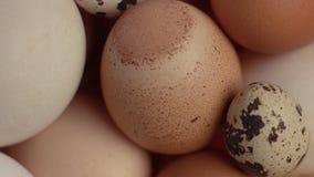 Vista superior de diversos huevos toda junto almacen de metraje de vídeo