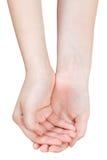 Vista superior de dos palmas huecos - gesto de mano Foto de archivo libre de regalías