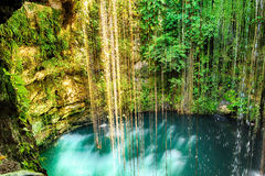Vista superior de Ik-Kil Cenote, perto de Chichen Itza, México Foto de Stock