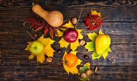 Vista superior de la cosecha hermosa de las manzanas, nueces, serbal, calabaza Fotografía de archivo libre de regalías