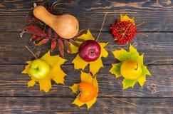 Vista superior de la cosecha hermosa de manzanas, pera, serbal, calabaza Foto de archivo