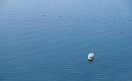 Vista superior de la motora en el mar Foto de archivo libre de regalías