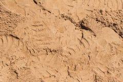 Vista superior de la superficie de la arena para el fondo fotografía de archivo libre de regalías