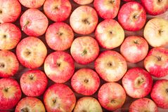 Vista superior de las manzanas rojas que mienten en filas Imagen de archivo