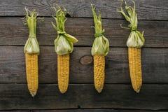 vista superior de las mazorcas de maíz crudas frescas dispuestas fotos de archivo libres de regalías