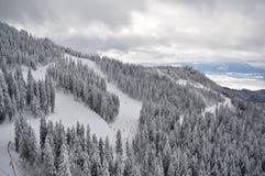 Vista superior de las montañas con el bosque en invierno Fotos de archivo libres de regalías